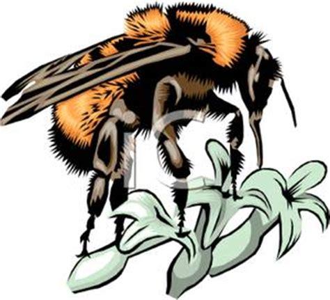 Book a Tour! - Review of Arlos Honey Farm, Kelowna